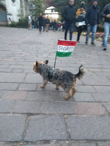 Cestopis Budapešť 2016-10-30-16-05-28